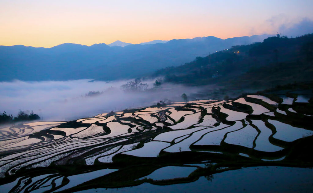 Rice Terraces - Yuanyang