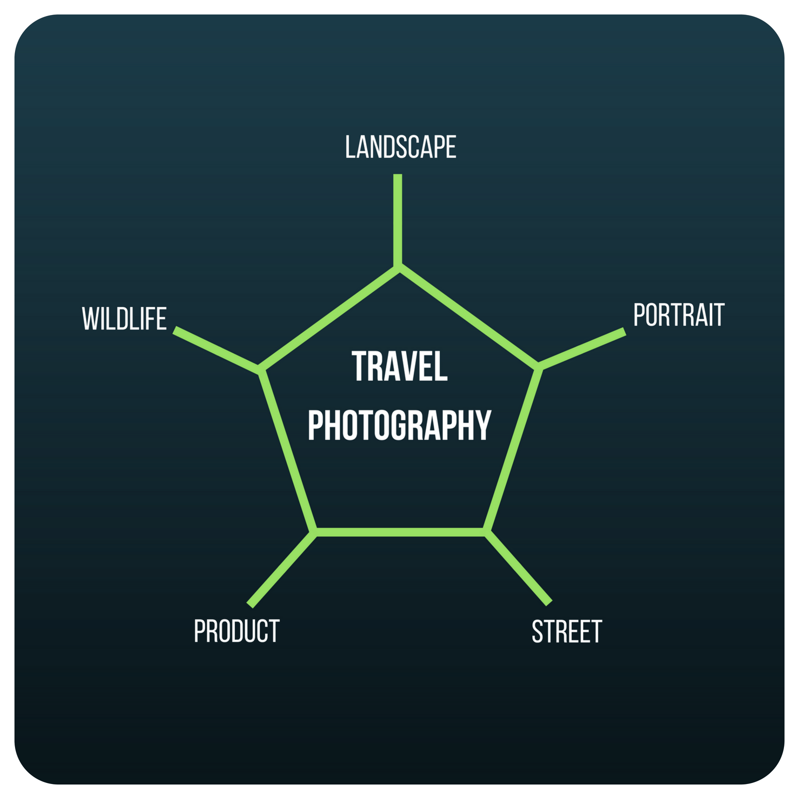 A diagram showing that travel photography is made up of landscape, portrait, street, wildlife and product photography