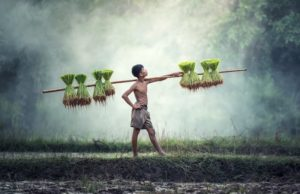Photographic tour of Laos