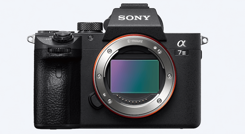 Could the Sony A7iii be the best mirrorless camera for travel?