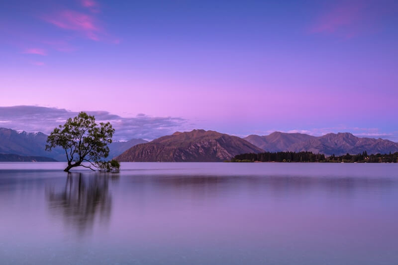 Wanaka, New Zealand Places to Visit for Photography